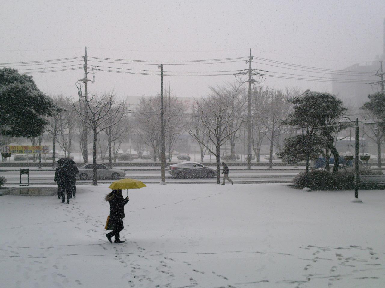 눈 오는 날 바닐라 라떼