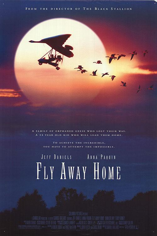 아름다운 비행, Fly Away Home, 1996