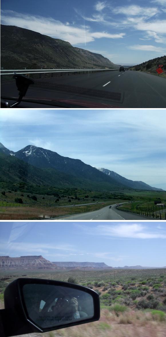 #4 로드킬 트라우마_ Sedona, USA / Jeju, KO..