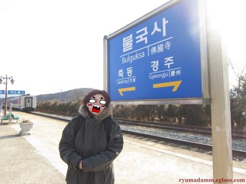 [영주-안동-경주] 1박2일 꽉찬 여행_경주편