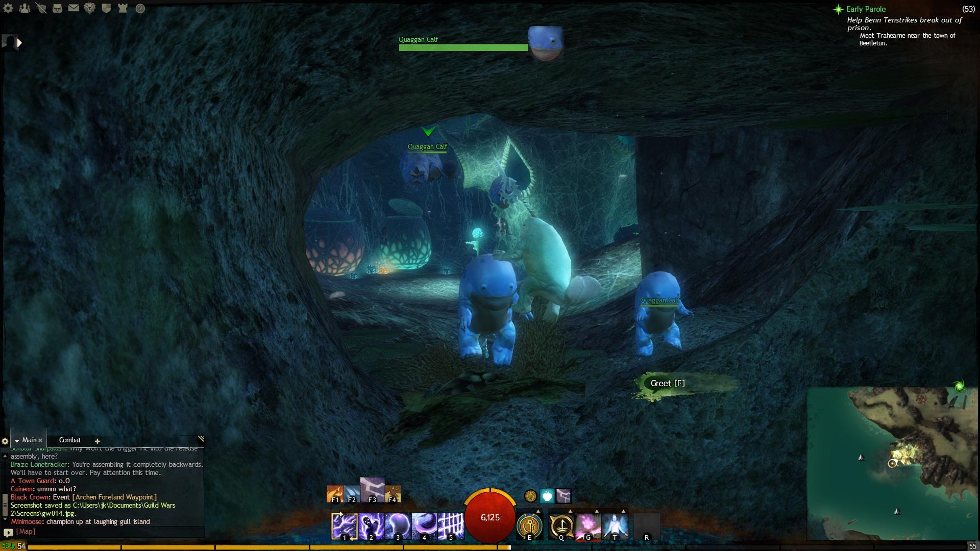 GW2 Screenshots