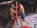 UFC in Japan, 반더레이 실바 VS. 브라이언 스..