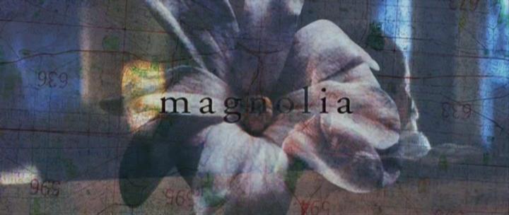 매그놀리아. Magnolia