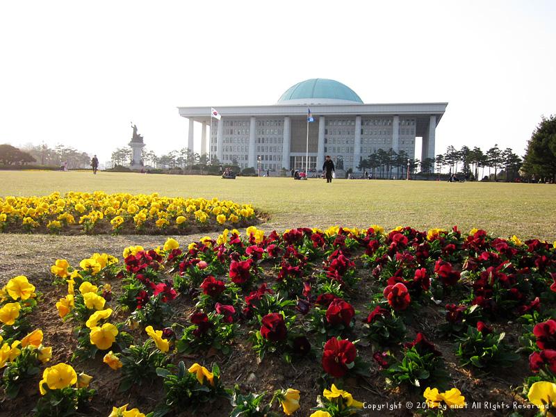 서울축제 : 2013 윤중로 벚꽃축제