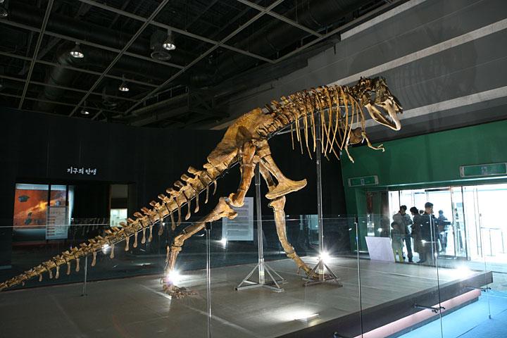 080127 _  AT센터 '러시아 자연사 박물관'