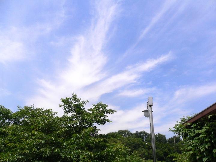 한강에서 여름나기 & 2013 한국국제관광전