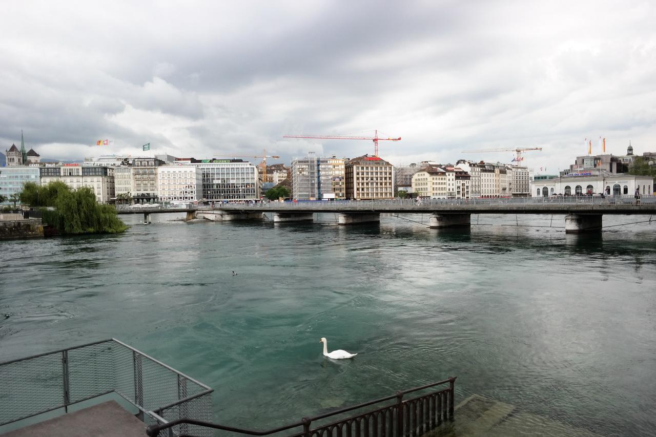 스위스 : 세계 평화의 상징 도시 제네바 #2 론강, ..