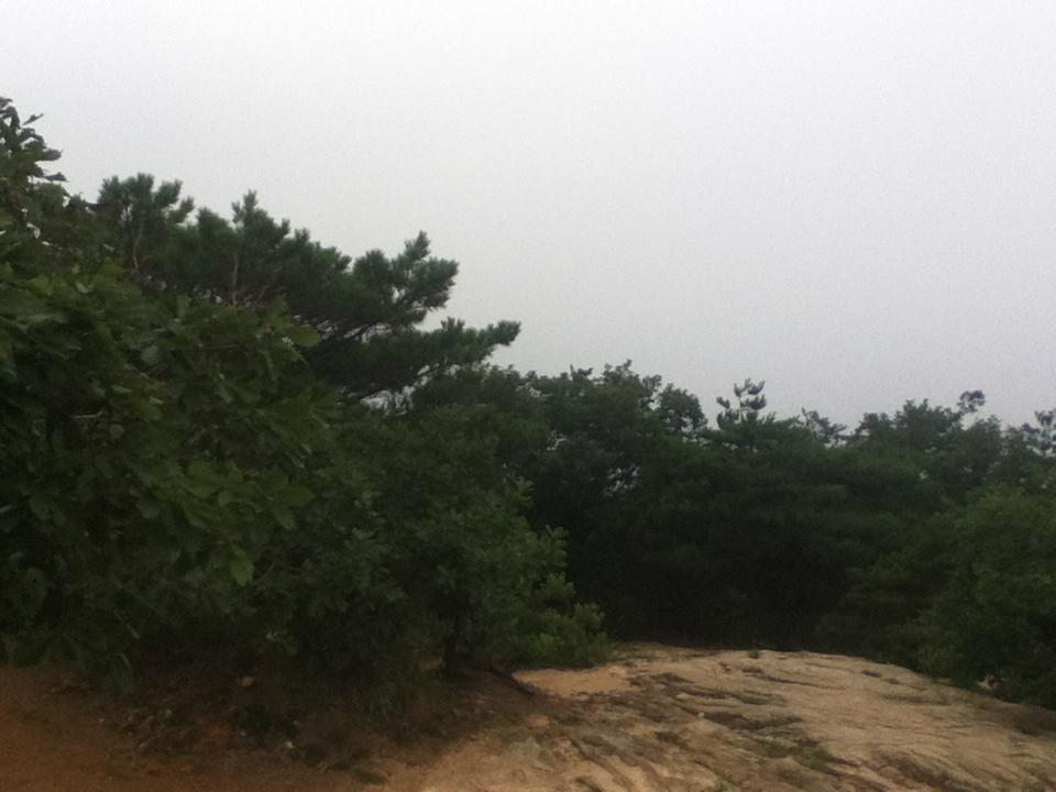 2013년 8월 8일 목요일 관악산 민주동산 정상 전경 사..