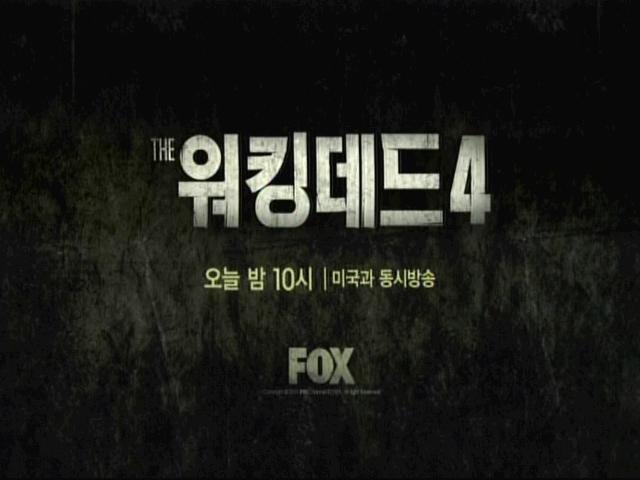 워킹데드 시즌4, 오늘부터 미국과 동시방송