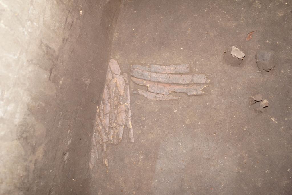 러시아 옴스크에서 뼈갑옷 출토