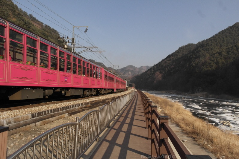 백두대간 협곡열차 V-Train(4460호) 2편 양원역..