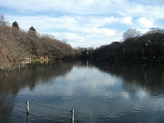 제4차 일본여행 3일째 (1) - 이노카시라 공원
