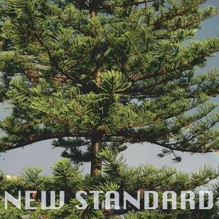 페퍼톤스- 해안도로 (New Standard, 2008)
