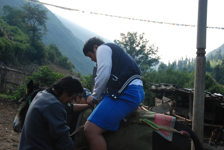 중국 운남성의 위벙雨崩 에서 당나귀 타고 산 넘은 ..