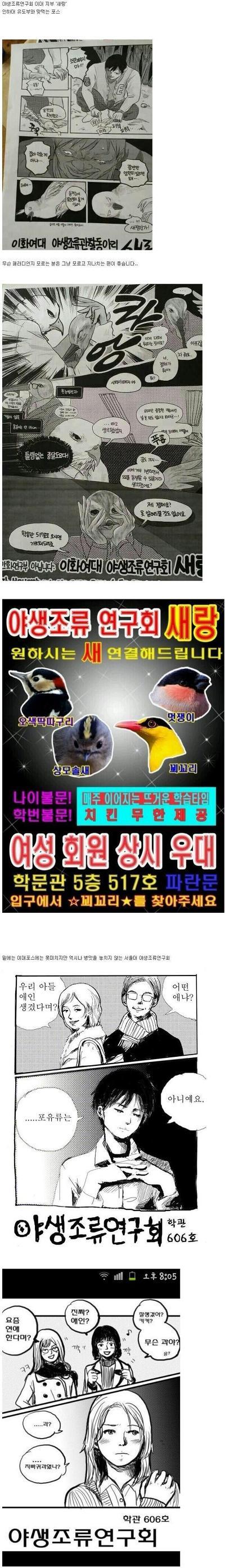 흔한 조류 동아리 포스터