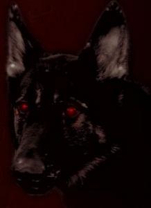 붉은 눈의 검은개 두마리와 흉가를 도는 의관귀신, ..