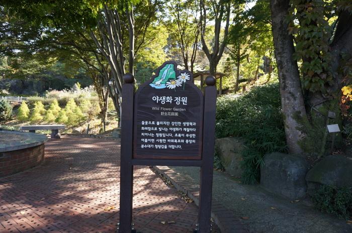 [천안여행] 베어트리파크 수목원 산책, 식물원