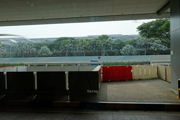 싱가폴 여행기 1일차-2(차이나타운, 피플스파크..