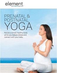Element Prenatal & Postnatal Yoga 임산부 &..