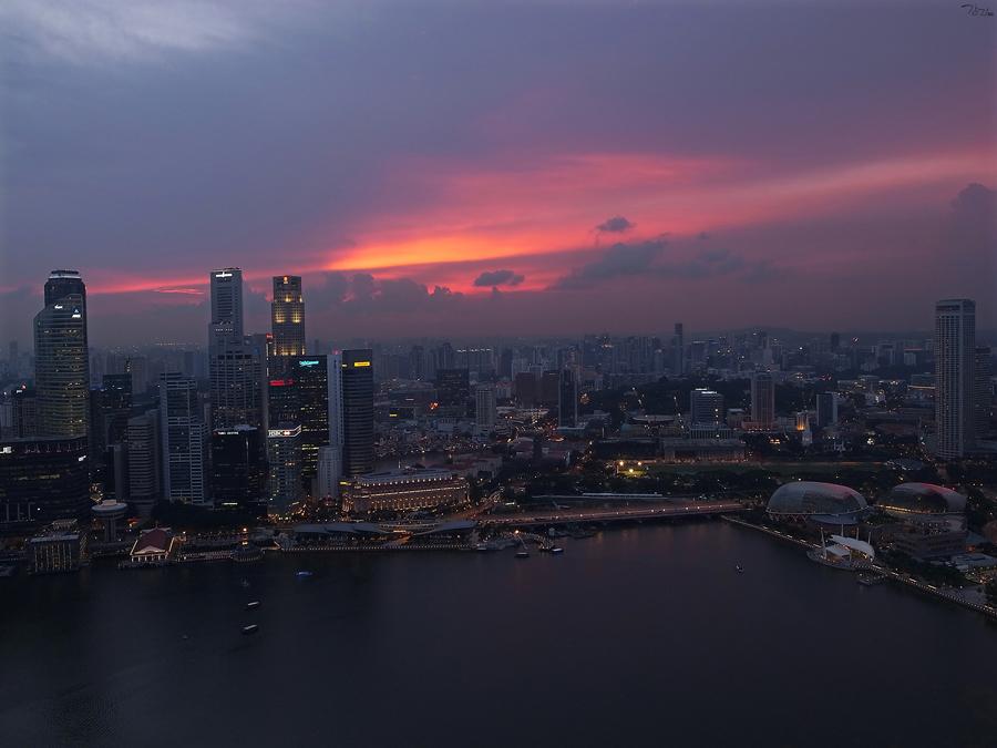 싱가포르 출장 : 한 장의 사진