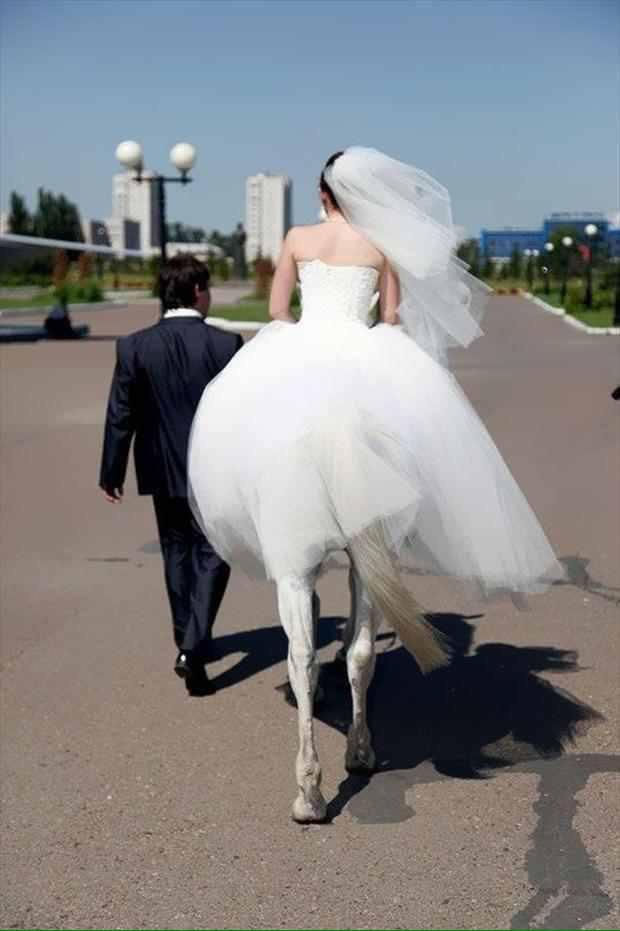 말을 타고 가는 뒷모습이 마치 켄타우로스처럼 보인다?