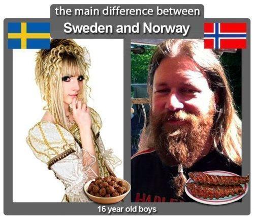 스웨덴과 노르웨이 16세 소년