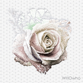 WHOwho (후후)-Oh yeah [듣기☆가사]동영상