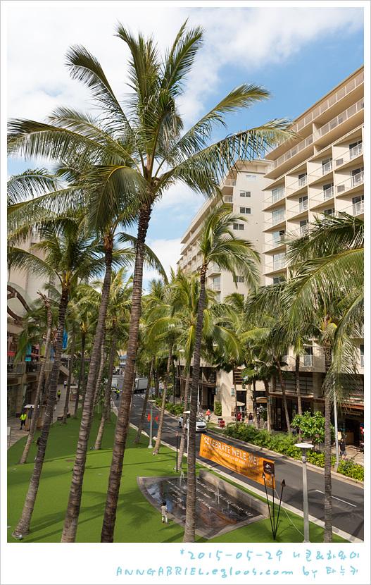 [하와이 오아후] 카이마나 해변 산책