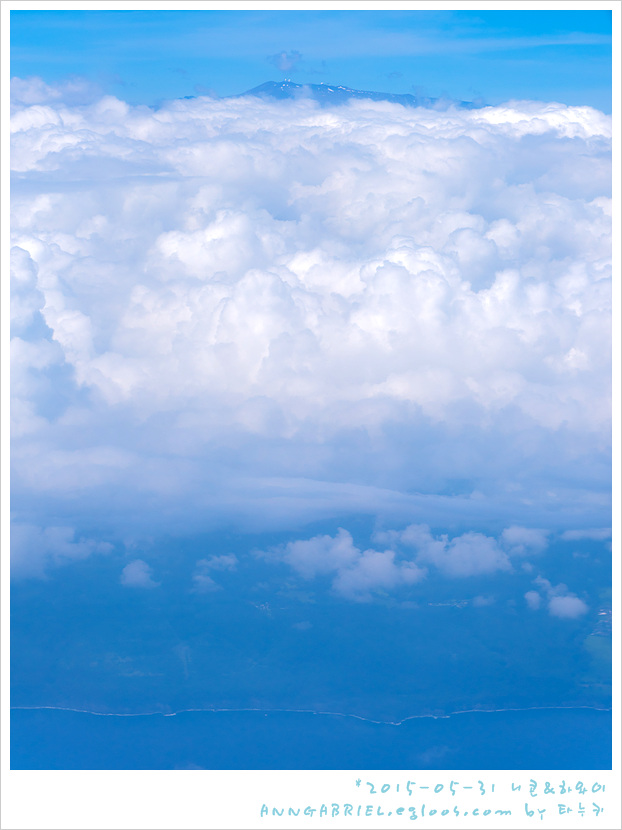 [하와이] 하와이안 항공을 타고 빅아일랜드 힐로..