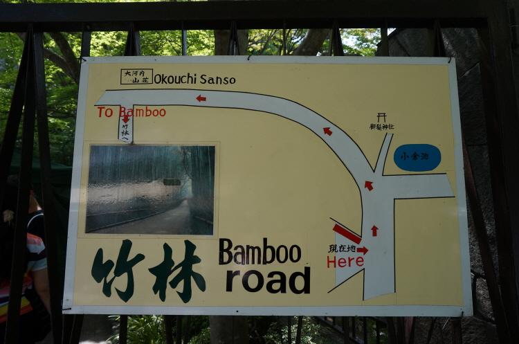 [일본여행] 오사카 교토 아라시야마 대나무숲 ..
