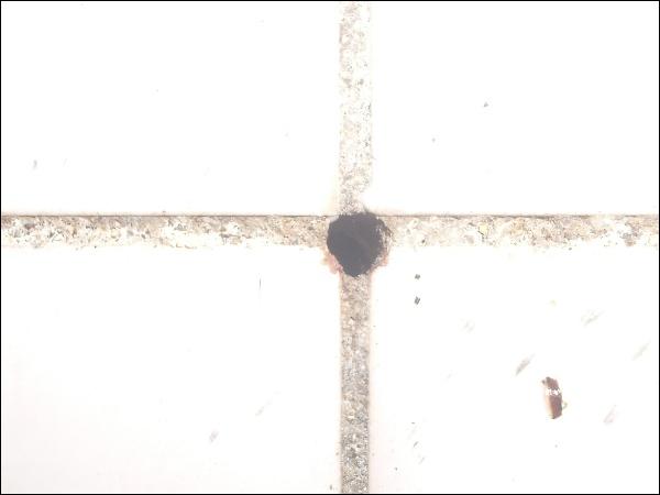 사진정리 (20150715~29) - 열대야 32.5도, 복숭아털..