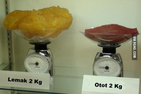지방 2kg과 근육 2kg