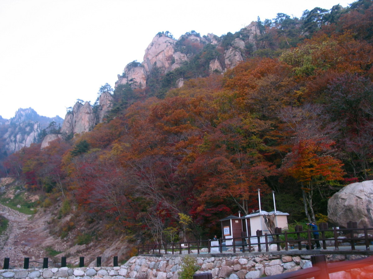 설악산 (흘림골 - 주전골) 단풍산행