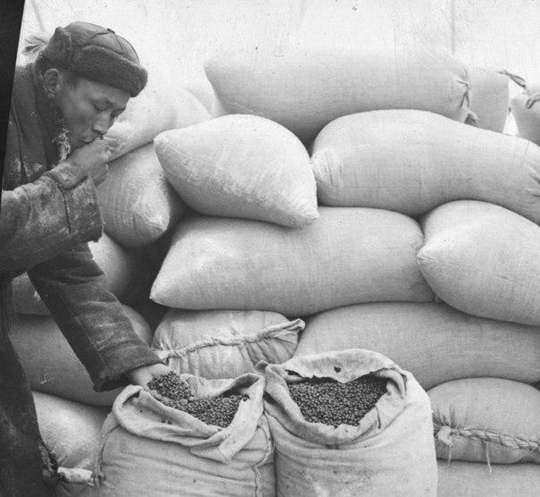 2차 세계대전 당시의 투바인들