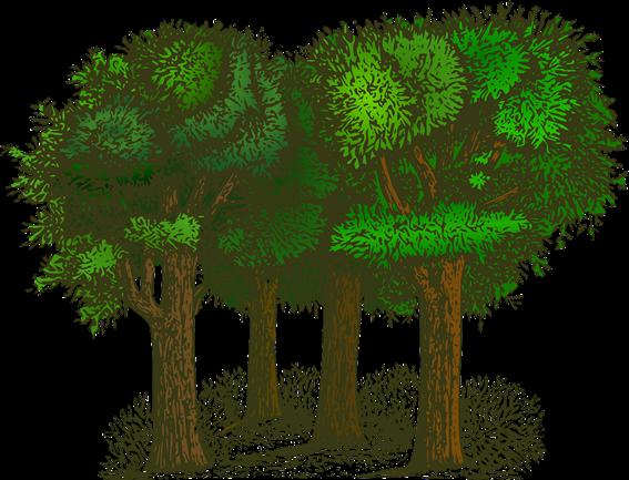 그림입니다.<br/>원본 그림의 이름: forest-148727_1280.png<br/>원본 그림의 크기: 가로 1280pixel, 세로 978pixel