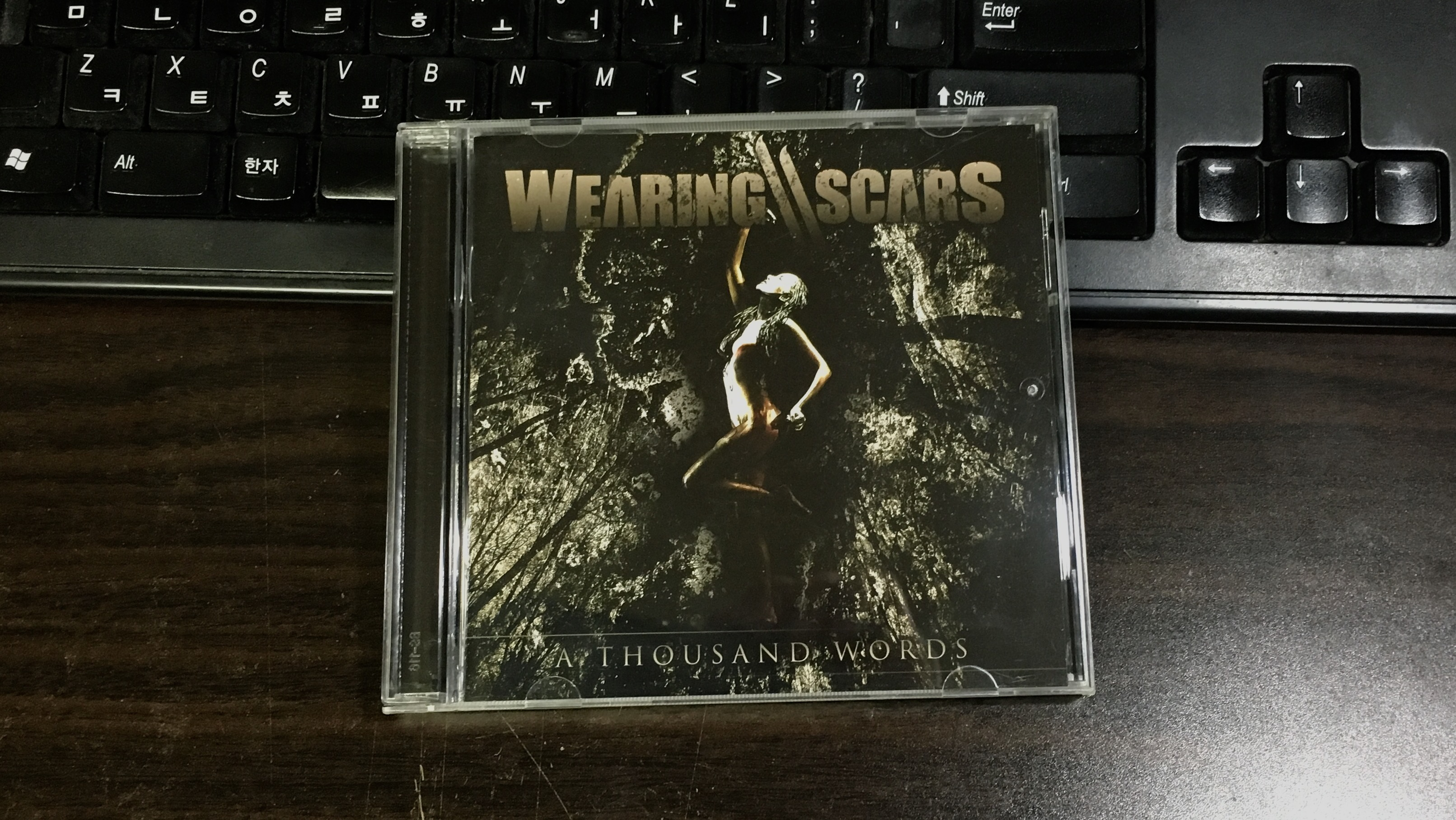 A Thousand Words - Wearing Scars / 2015
