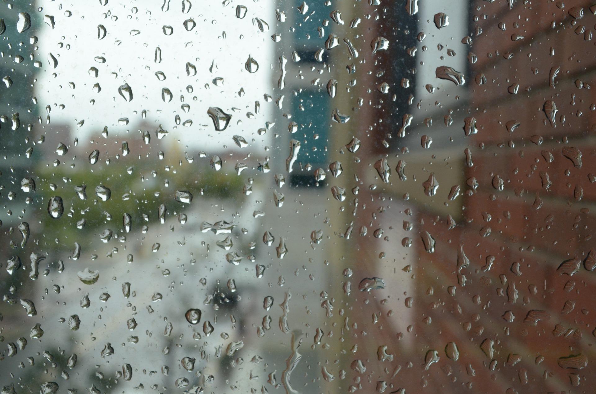 비와 햇빛사이