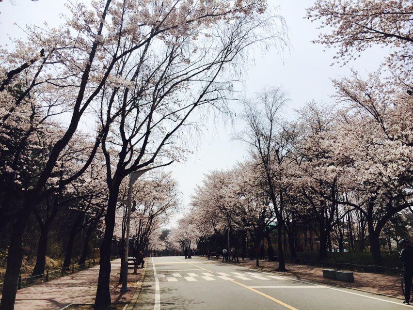 [인천 하이킹] 실수에서 시작된.. 관모산 산행