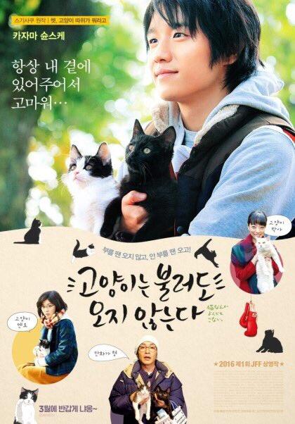 영화 <고양이는 불러도 오지 않는다> 개봉!!