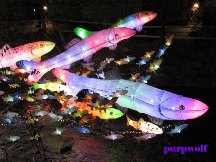 2016 서울빛초롱축제