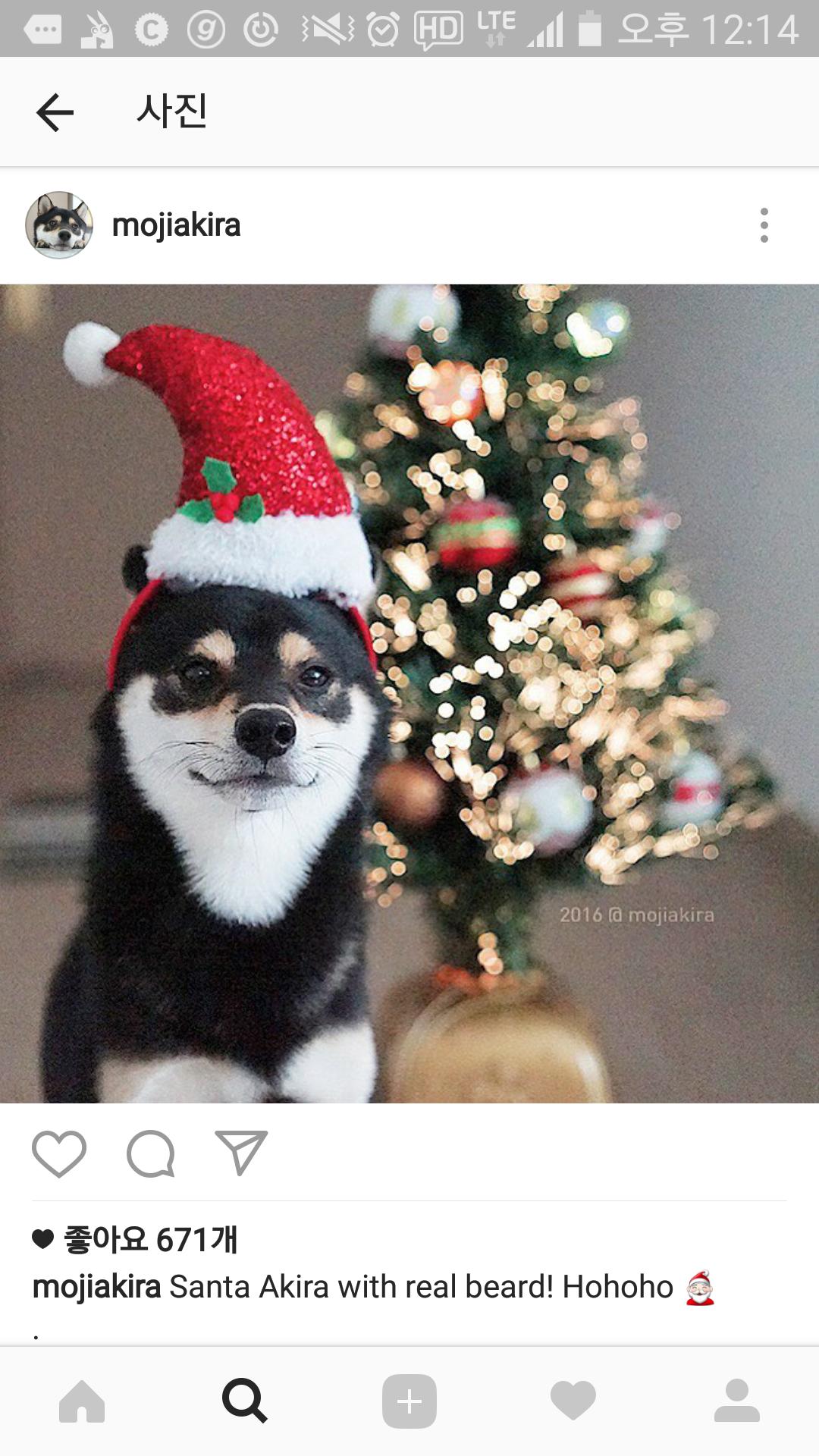 아즈 산타 변신시도.....