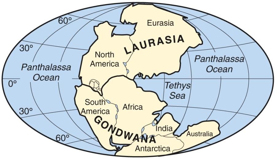 판게아(Pangaea : παγγαία) 와 대륙..