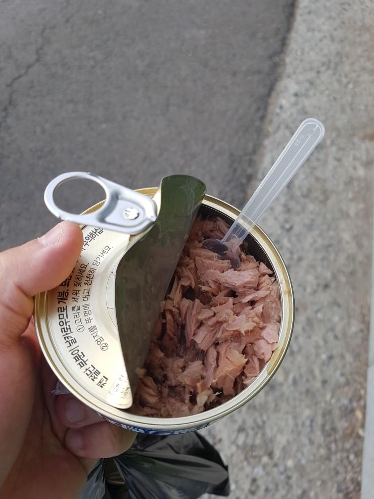참치캔 다이어트