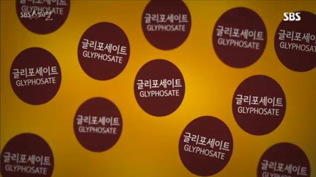 GMO가 위험한 이유들 중에