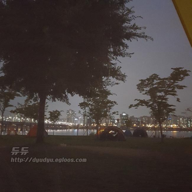 여의도 한강공원 피크닉