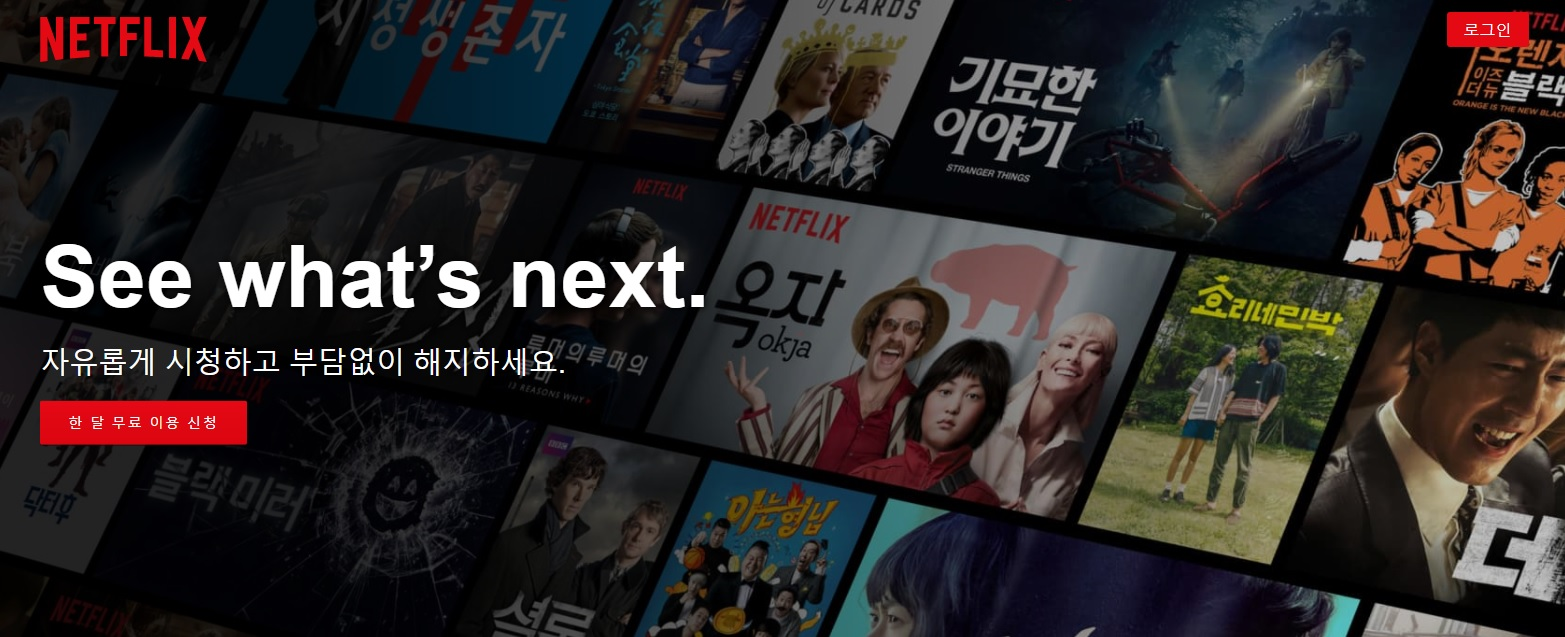 넷플릭스 코리아의 미래에 대하여..