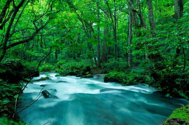 물 문제에 있어서 축복받은 나라가 일본이던군요...