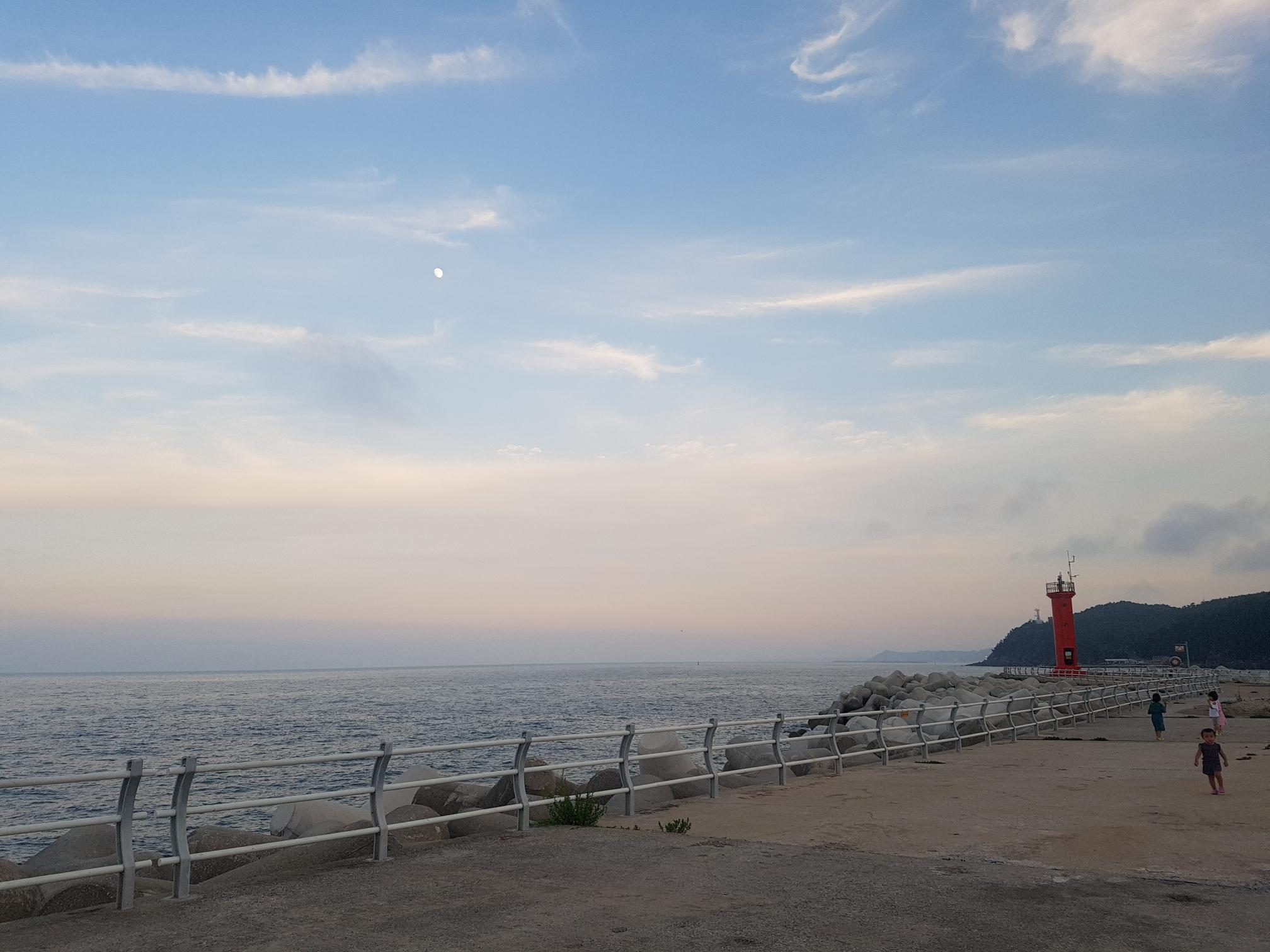 바다의 낮달