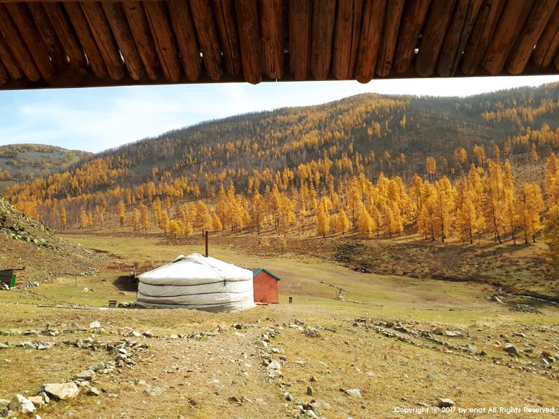 몽골 자유여행 (5.4) 게르 생활 : 점심, 야크 젖