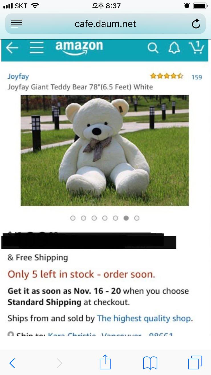 아마존에서 곰인형 샀다